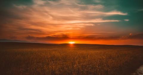 clouds-cropland-crops-462023