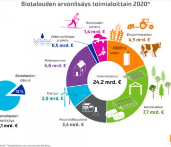 biotalouden-arvonlisays-toimialoittain-2020-infograafi
